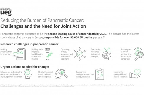 Pancreatic Cancer - Challenges and the Need for Joint Action