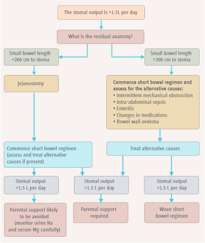 Suggested algorithm for assessing and managing high stomal output
